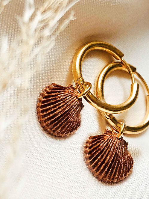 """Little Scallop"" Earstuds"