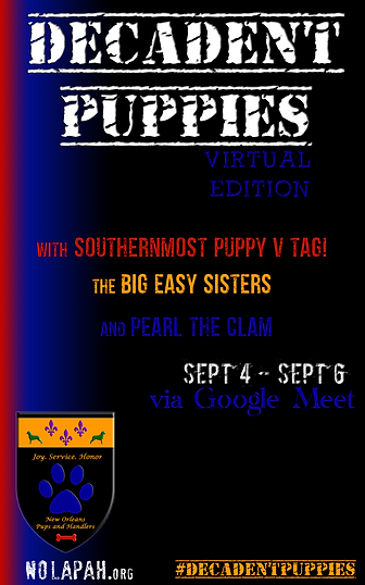 DPSplash2 SD 2020 copy.png