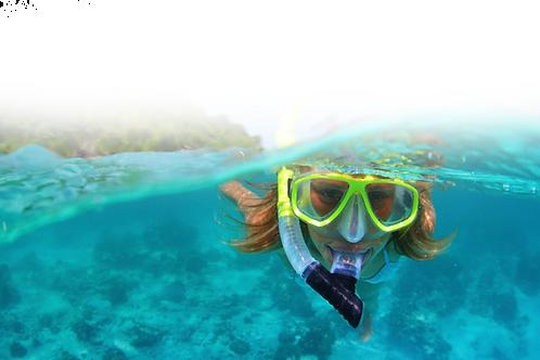Randonnée Palmée / Snorkeling