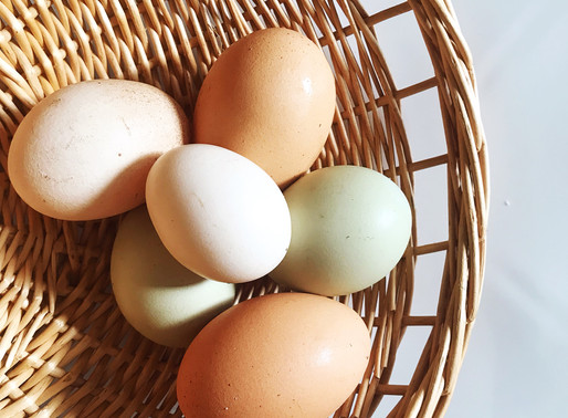 EATING EGGS - THE AYURVEDIC PERSPECTIVE