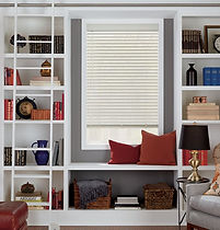 bookshelves-sq_edited.jpg