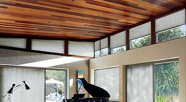 ceilings-wide_edited.jpg