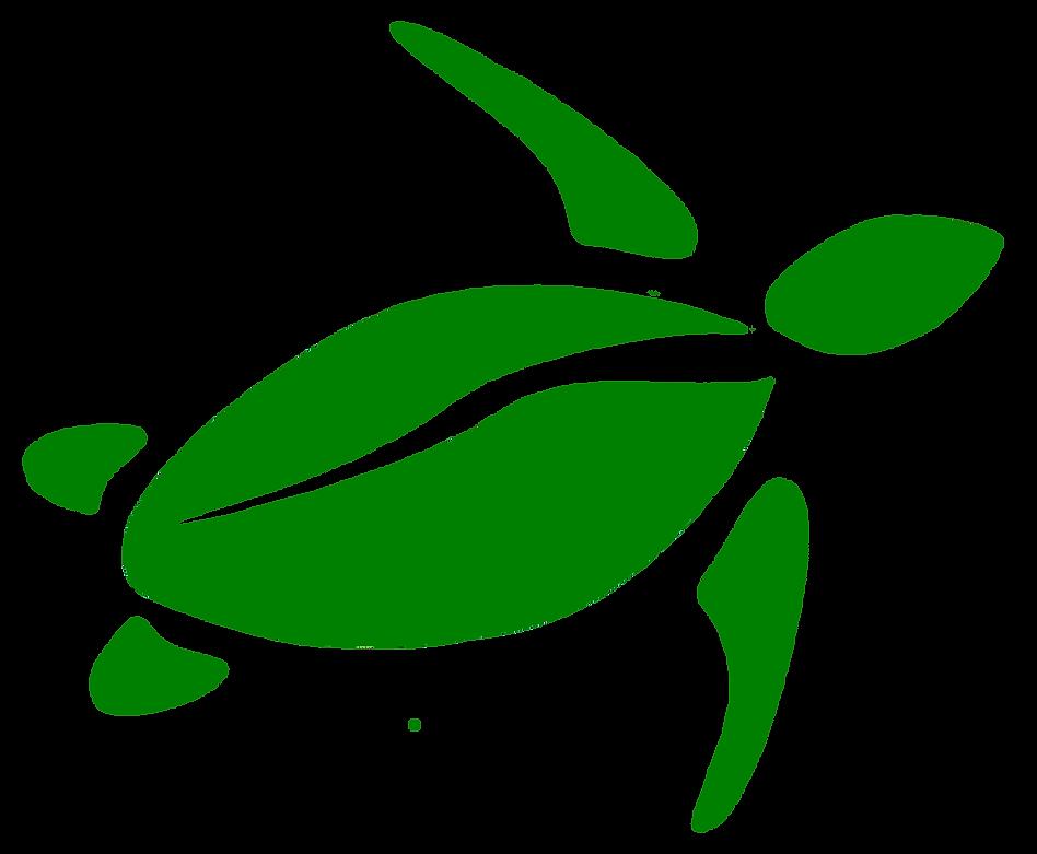 Greener Galle   For a better environment in Sri Lanka