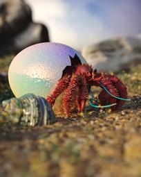 Egg-16