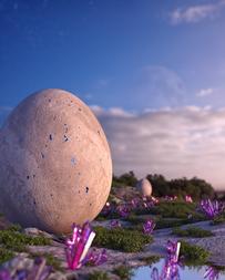 Egg-05