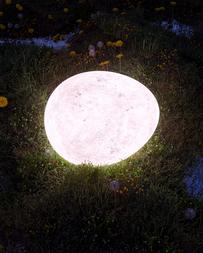 Egg-06
