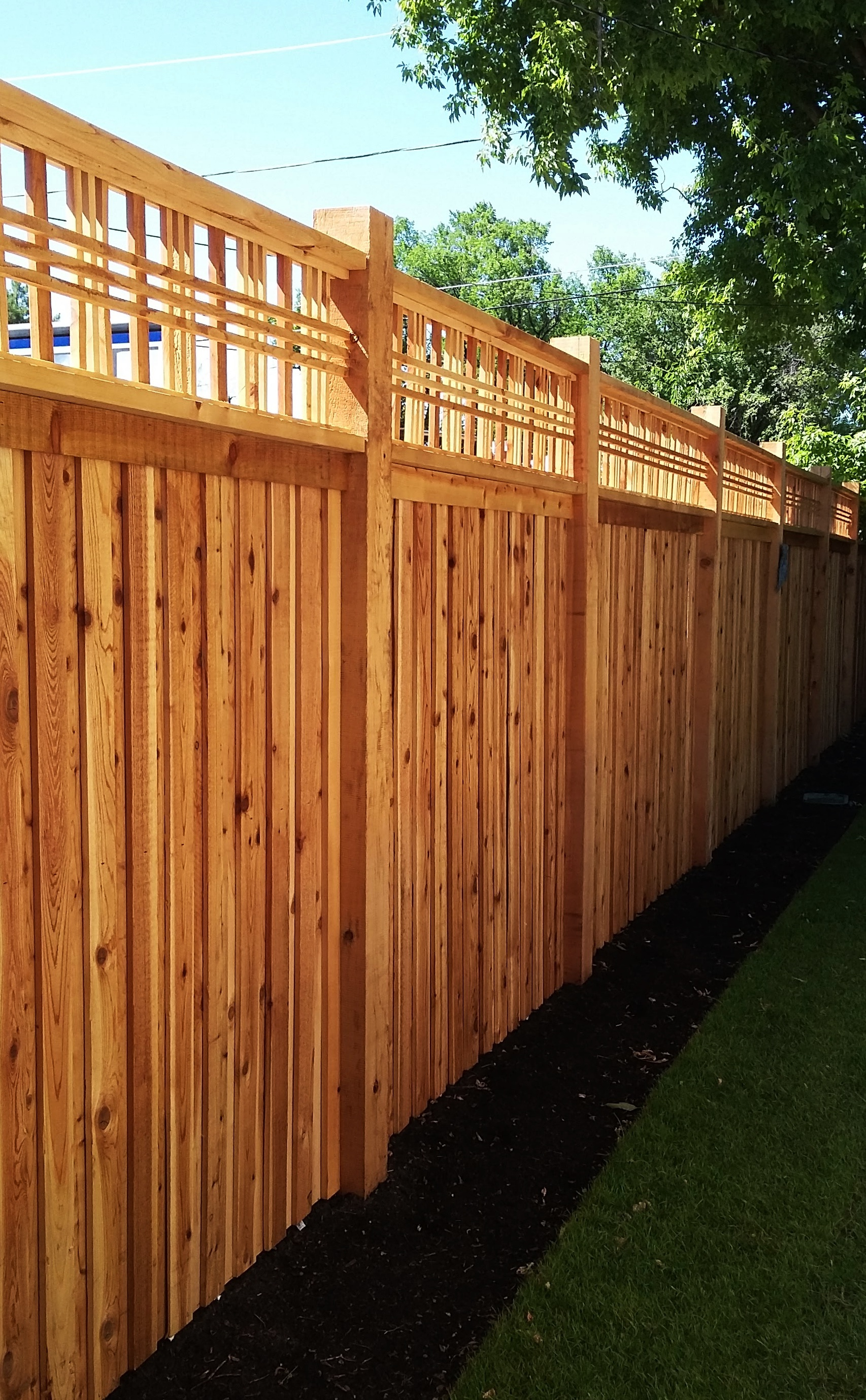 Cedar fencing