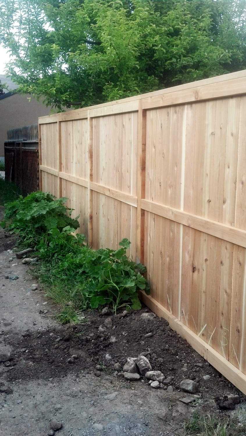 Pine fencing