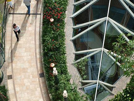 Garden Design, Custom Pools, Specimen Plant Materials
