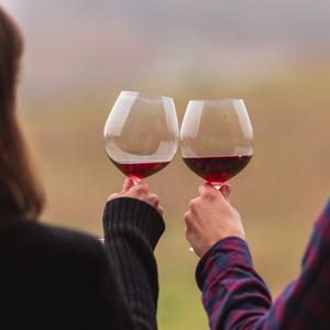 Lingua Franca Wines