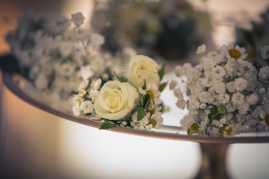 ROSINA_DIBELLO_photography CHLOE-4.jpg