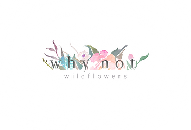 why not wildflowers logo website.png