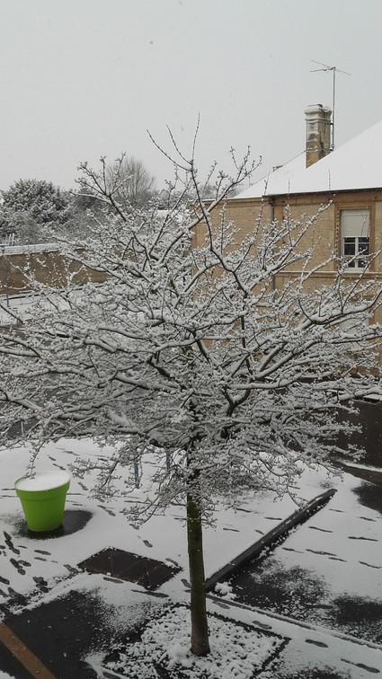 015 - Jour de neige.jpg