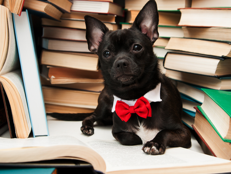 5 Books to Improve Your Sales Game in 2021