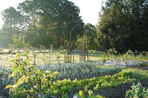 Potager-jardin-des-barthes-1