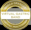 virtual gastric band logo