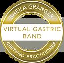 logo de la bande gastrique virtuelle