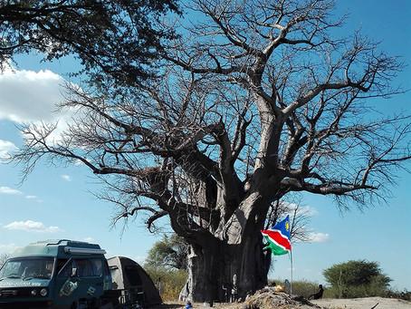 Selbstfahrer: Namibia auf eigene Faust erkunden. Mit fachlicher Planung.