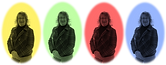 Sue Reed Clarity4D Profile.png