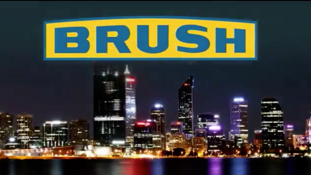 Brush Electrical Machines