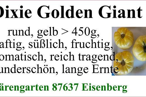 Tomaten groß - Dixie Golden Giant