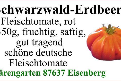 Tomaten groß - Schwarzwald-Erdbeere