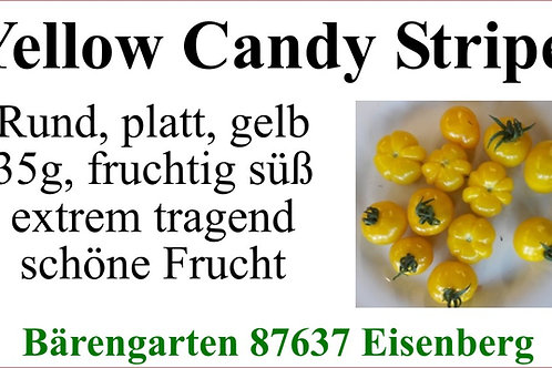 Tomaten klein - Yellow Candy Stripes
