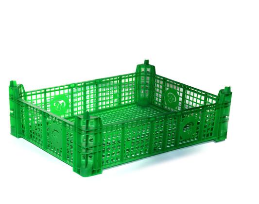 грибной-ящик-зеленый.jpg