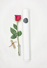 Single Rose Delivery Tube