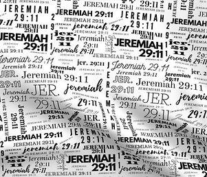 Jeremiah 29:11 Design