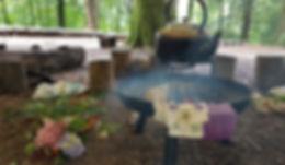 campfire kettle woods