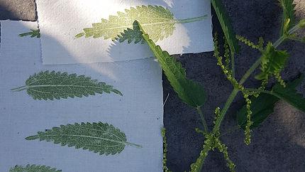 leaf printing.jpg