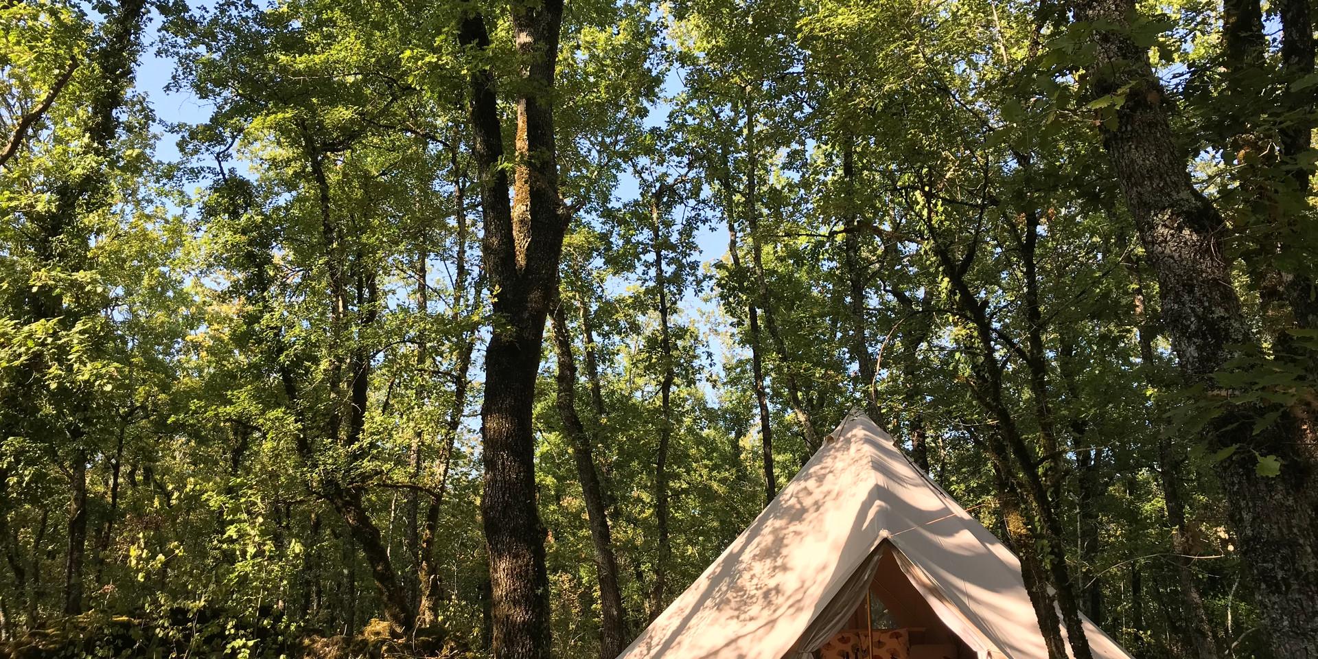 tente sous les arbres