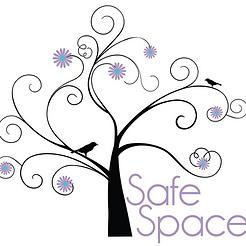 DV Safe.png