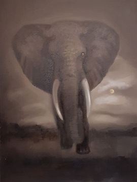 Elephant Oil