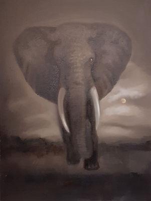 Elephant_00002 (3).jpg