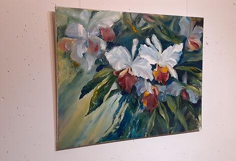 Orchids_00012 (6).jpg