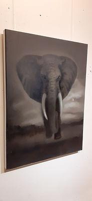 Elephant_00002 (8).jpg