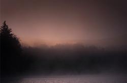 Purple Haze at Moose Pond