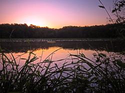 Smithville Pond