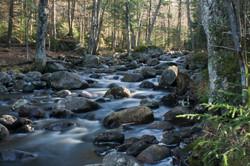 Stream near Racquette Lake
