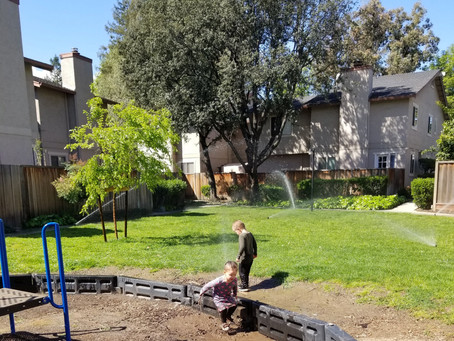 Play in the Sprinklers