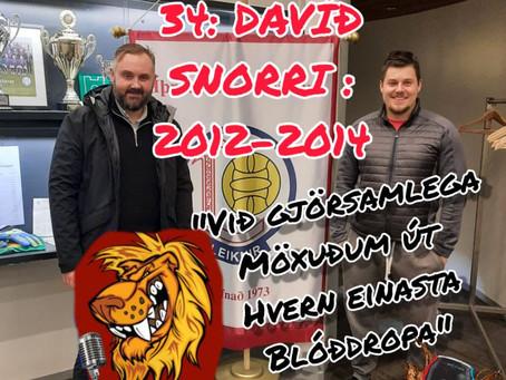 Ljónavarpið #34: Davíð Snorri um 2012-2014