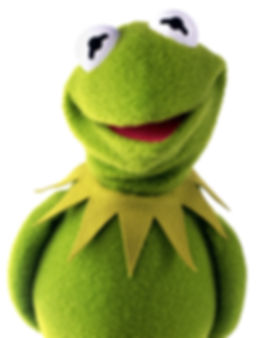 KermitTheFrog-CutePhoto.jpg