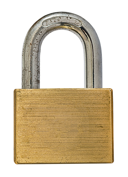 Empty Property Security Padlock