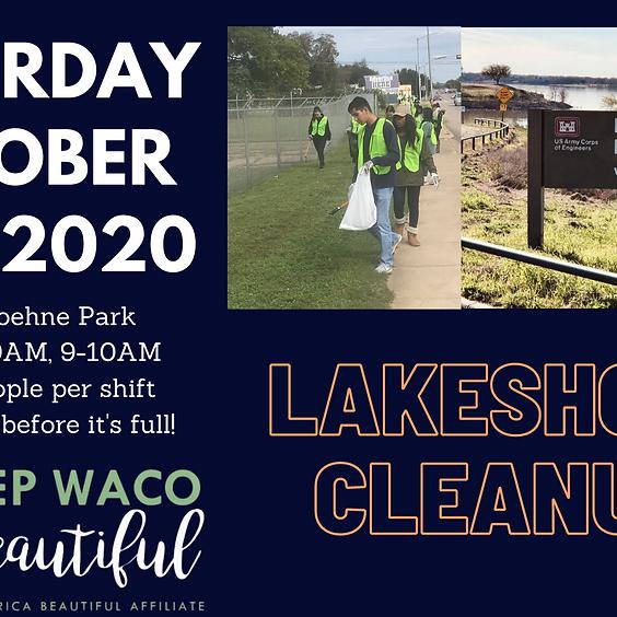 Lake Shore Cleanup