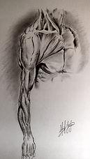 Leonardo Da Vinci Arm Anatomy Study (Signed, unframed)