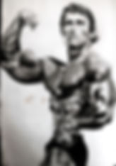 Reproduction of Arnold