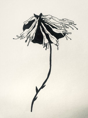 alienflower.jpg