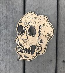 skull_fix.jpg
